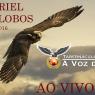 2560x1440_eagle-flight-sky-wings-clouds